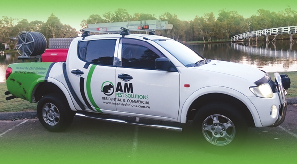 AM Pest Solutions Budgewoi